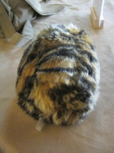 John Hemry's tribble, relaxing in the green room